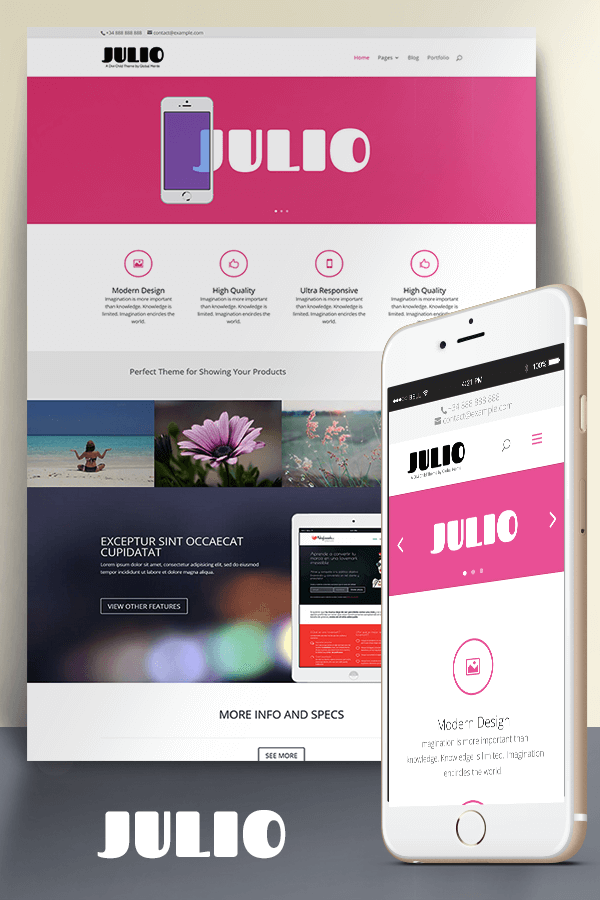 Julio (Divi child theme)